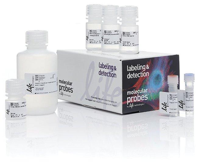 Molecular Probes Click-iT Plus EdU Alexa Fluor 647 Flow Cytometry Assay
