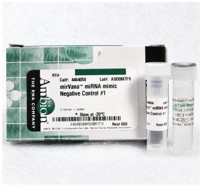 Invitrogen mirVana miRNA Mimic, Negative Control #1  :Life Sciences:Molecular
