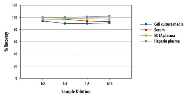 R Mouse/Rat Angiopoietin-2 Quantikine ELISA Kit, R  One 96-well plate:Electrophoresis,