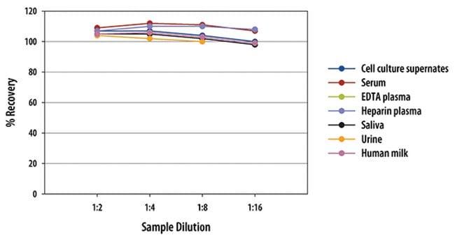 R Human CA125/MUC16 Quantikine ELISA Kit, R One 96-well plate:Electrophoresis,