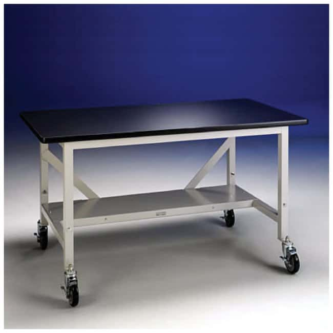LabconcoPrecise Glove Box Base Stands Mobile (with casters):Laboratory