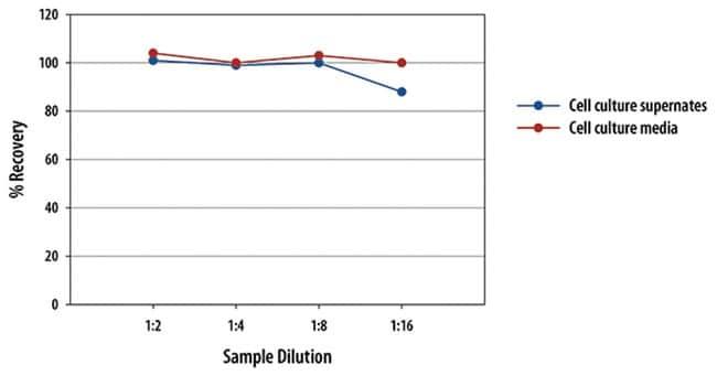 R Mouse IL-13 Culture Media Quantikine ELISA Kit, R  Two 96-well plates:Electrophoresis,