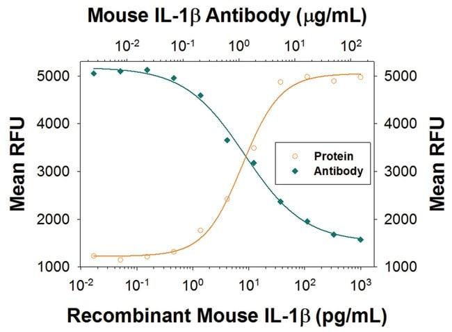 IL-1 beta/IL-1F2 Rat anti-Mouse, Clone: 30311R, R::