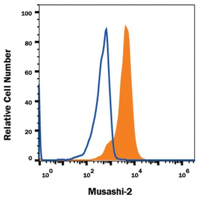 Musashi-2 Mouse anti-Human, Clone: 960121, R::