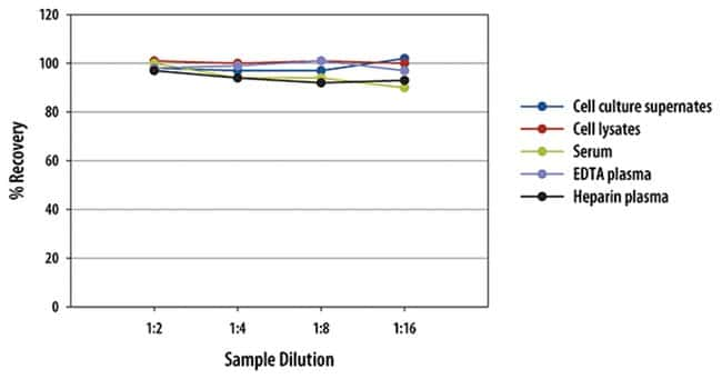 RD SystemsMouse Proprotein Convertase 9/PCSK9 Quantikine ELISA Kit 1 Kit:Electrophoresis,