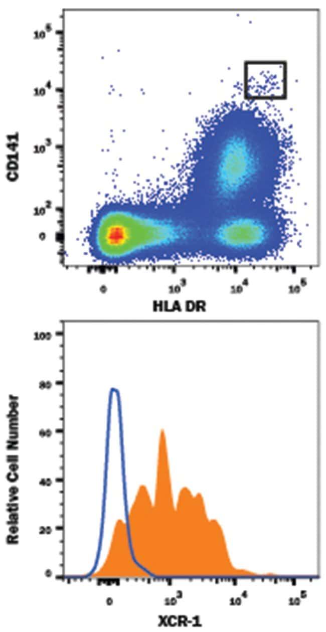 XCR1/CCXCR1 Rabbit anti-Human, PE, Clone: 1097A, R 25 Tests; PE