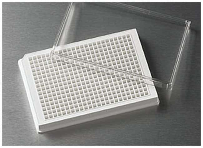 Corning™384-Well, Cell Culture-Treated, Flat-Bottom Microplate