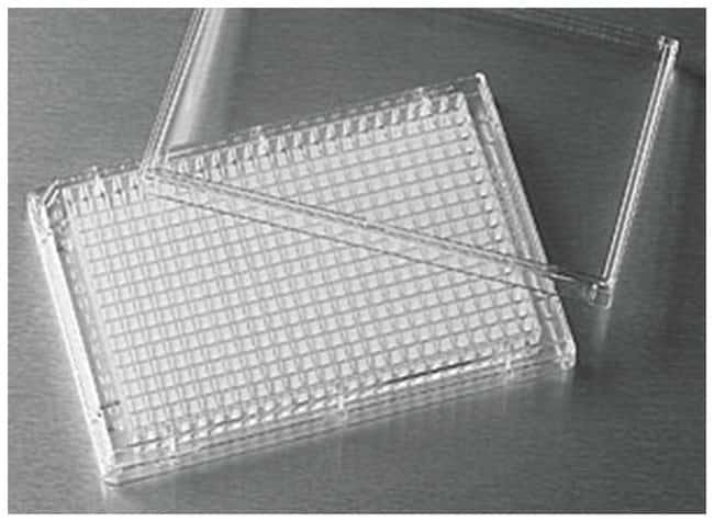 Corning™ 384-Well Clear Polystyrene Microplates