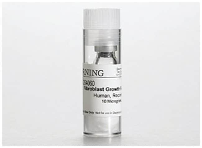 CorningBasic Fibroblast Growth Factors (bFGF), Human Recombinant 50 μg:Antibiotics