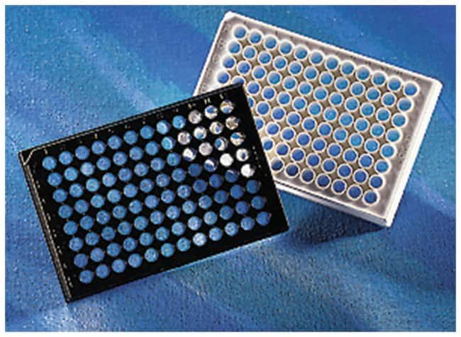 Corning™ 96-Well Clear Bottom Black or White Polystyrene Microplates