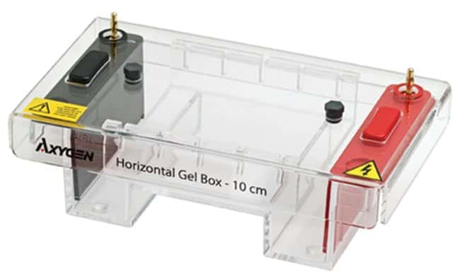 Axygen™ Horizontal Gel Box, 10 cm 10 cm Horizontal Gel Systems