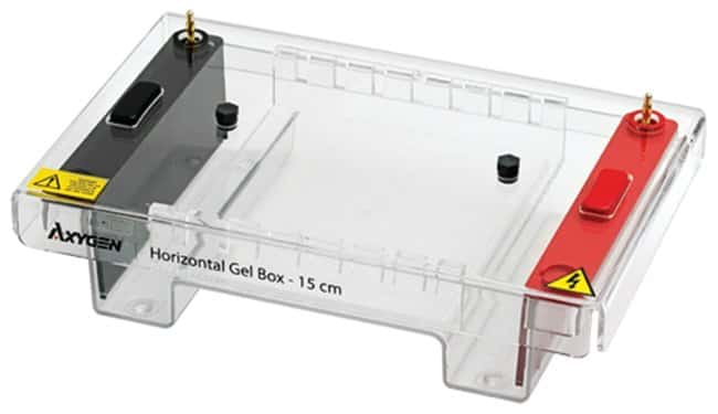 Axygen™ Horizontal Gel Box, 15cm