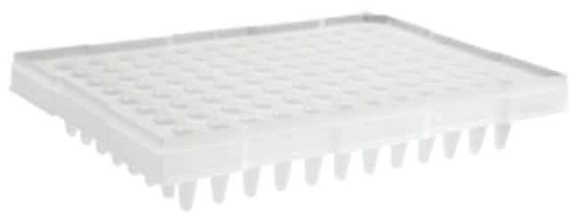 Axygen™96-well PCR Microplates