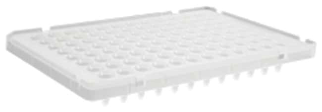 Axygen™96-Well Low Profile PCR Microplates