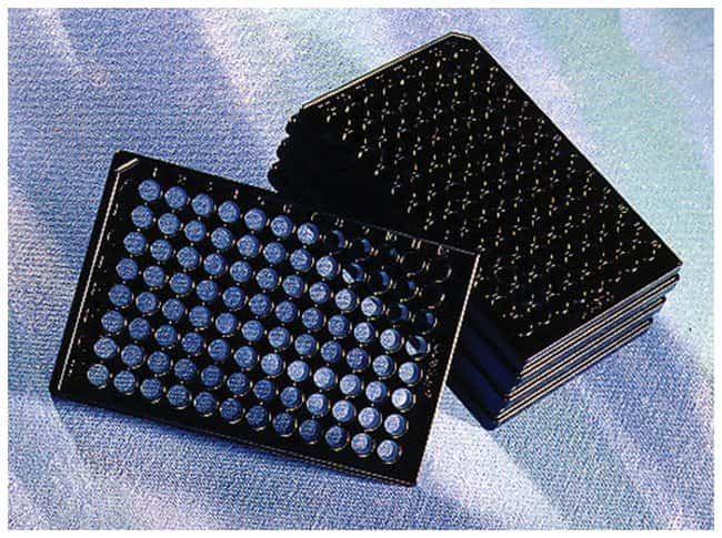 Corning™96-Well, CellBIND-Treated, Flat-Bottom Microplate