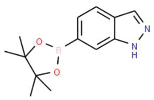 Indazole-6-boronic acid pinacol ester, 97%, Acros Organics