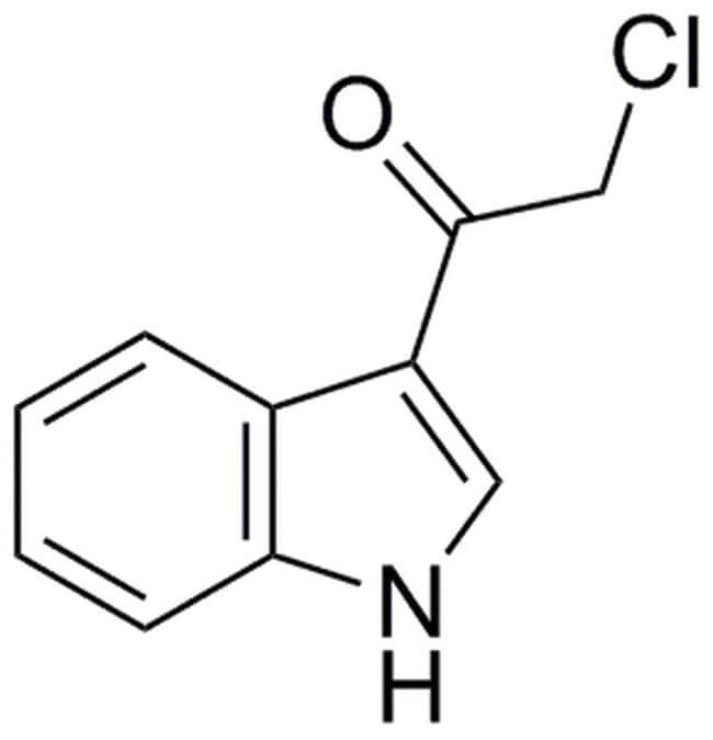 MilliporeSigmaCalbiochem Akt Inhibitor XIX, 3CAI 25mg:Protein Analysis