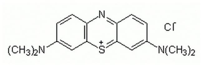 MilliporeSigma Calbiochem Methylene Blue 1gm:Life Sciences