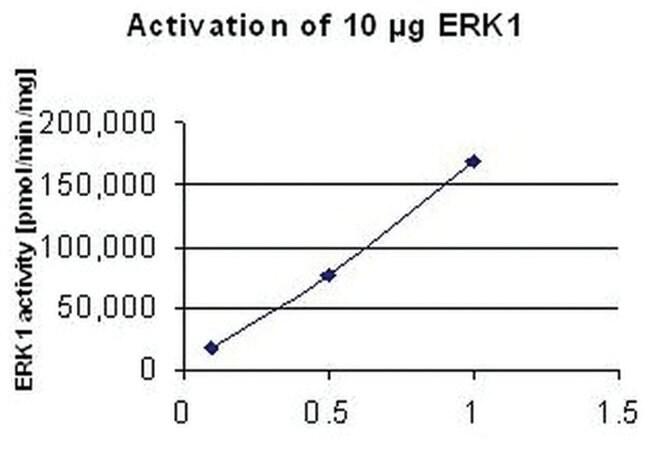 MilliporeSigma MEK1, GST-Fusion, Human, Recombinant Protein, E. coli 10µg:Life