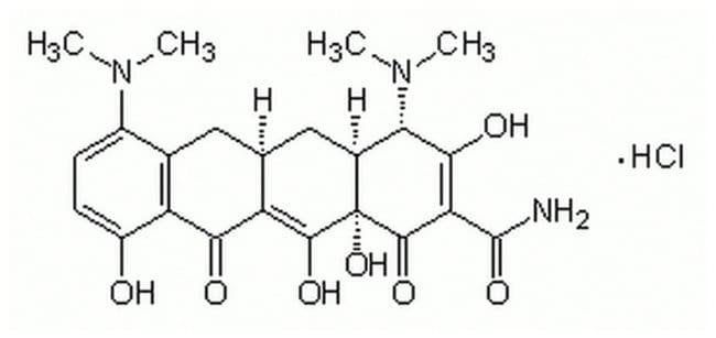 MilliporeSigma Calbiochem Minocycline, Hydrochloride 50mg:Life Sciences