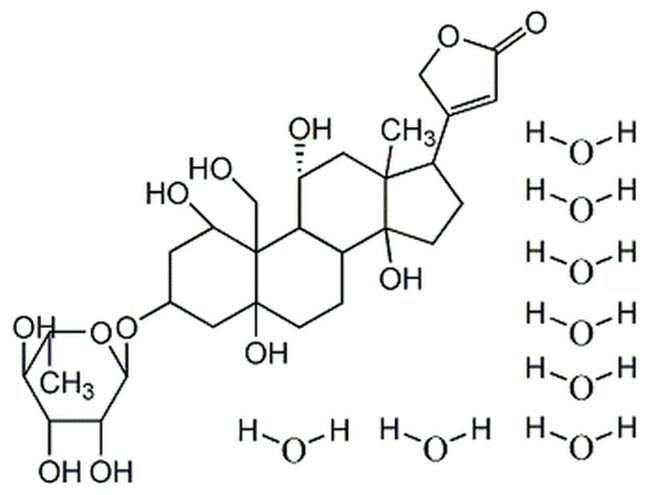 MilliporeSigma Calbiochem Ouabain, Octahydrate 1gm:Life Sciences