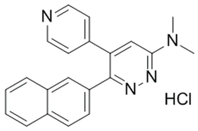MilliporeSigmaCalbiochem p38 MAP Kinase Inhibitor XX, MW108 10mg:Protein