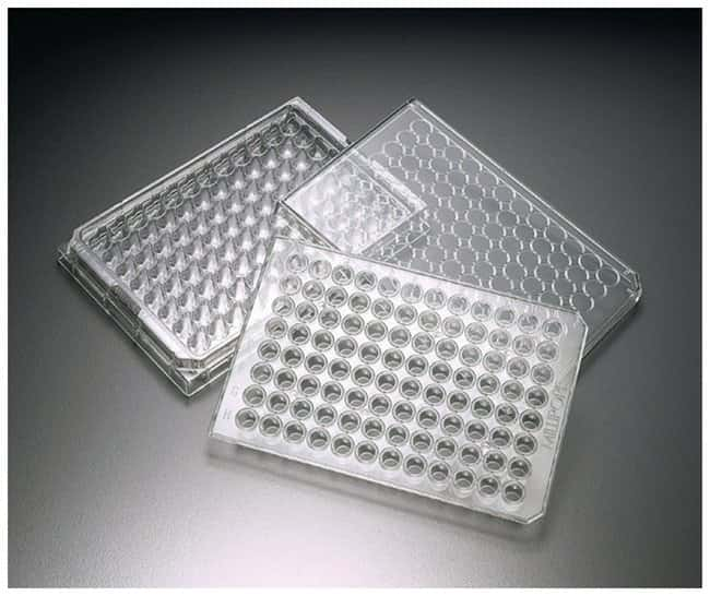 MilliporeSigma MultiScreen 96-Well Assay Plates for Cell-Based Assays:Dishes,