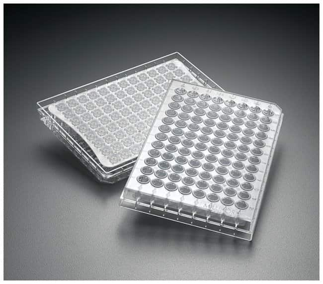 MilliporeSigma MultiScreenHTS Durapore 96-Well Filter Plates :Dishes, Plates