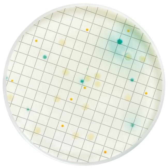 MilliporeSigma Nutrient Media Pseudomonas Selective Broth; 2mL ampule:Diagnostic