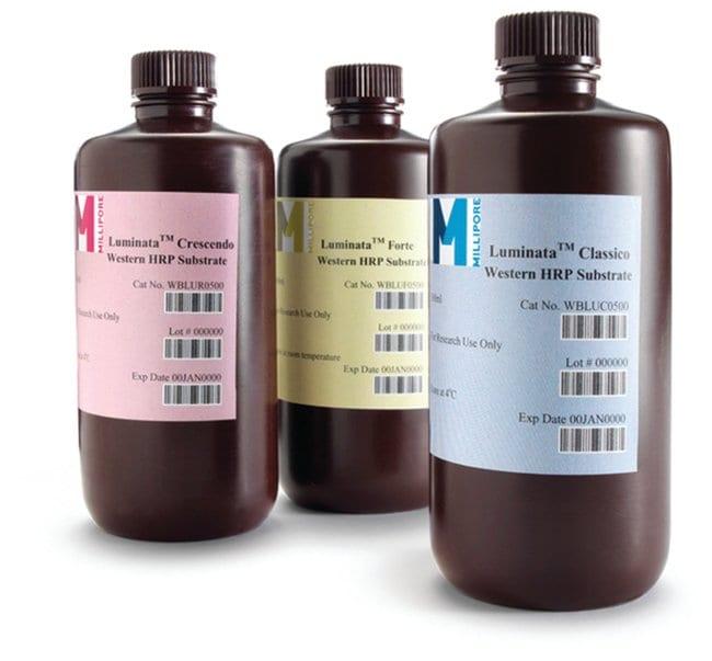 MilliporeSigma™Luminata™ Western HRP Chemiluminescence Substrates