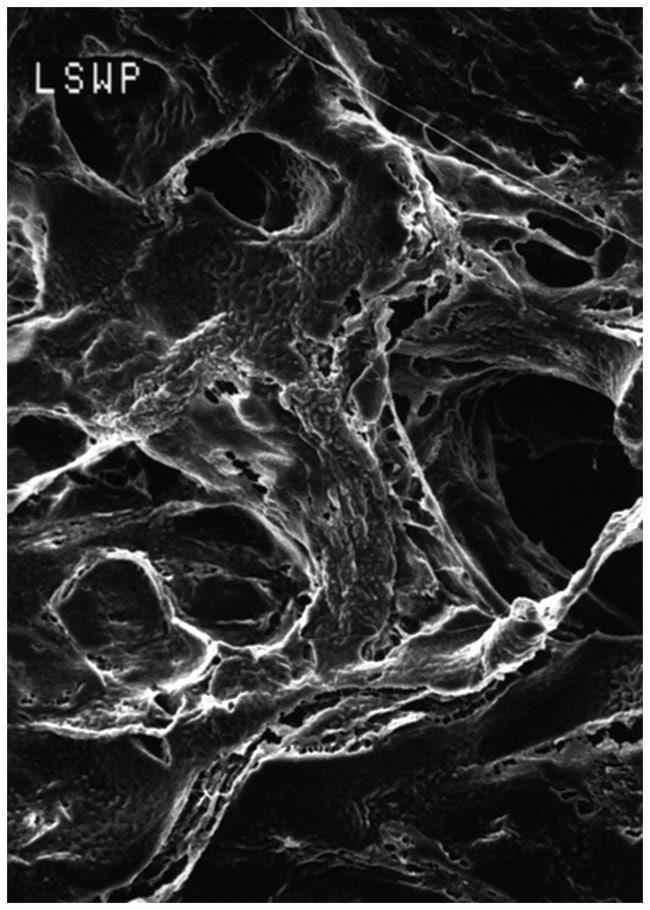 MilliporeSigma™Mitex™ PTFE Membrane Filters