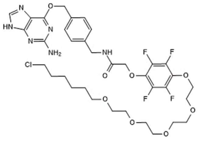 Tocris Bioscience HaXS8, Tocris Bioscience  Quantity: 2mg