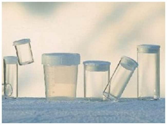 Greiner Bio-One Flat Bottom Polystyrene Test Tubes:Test Tubes, Vials, Caps
