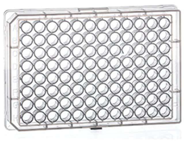 Greiner Bio-One 96-Well Chimney designed Round (U) Bottom Microplates:Dishes,
