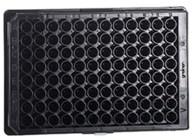 Greiner Bio-One 96-Well Conical Bottom (V) Polypropylene Microplates Black:Dishes,