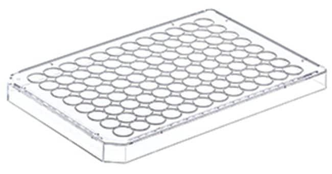 Greiner Bio-OnePolystyrol-Mikrotiterplattendeckel mit hohem Profil Hohes Profil; steril; mit Kondensationsringen; einzeln verpackt Produkte