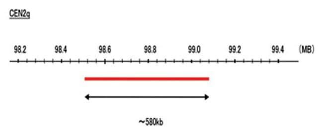 Abnova™CEN2q (Texas Red) FISH Probe 1 Set Fluorescent in situ hybridisation (FisH) Reagents