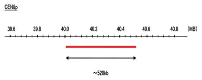 Abnova CEN8p (DEAC) FISH Probe 1 Set:Life Sciences