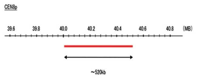 Abnova CEN8p (Cy5) FISH Probe 1 Set:Life Sciences