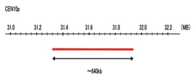 Abnova CEN10p (R6G) FISH Probe 1 Set:Life Sciences
