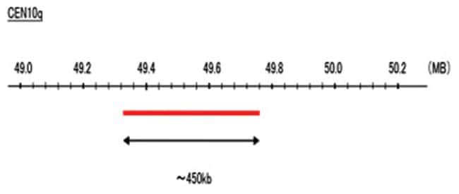 Abnova CEN10q (DEAC) FISH Probe 1 Set:Life Sciences