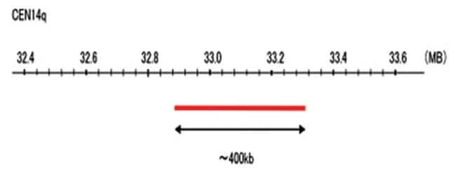 Abnova CEN14q (R6G) FISH Probe 1 Set:Life Sciences