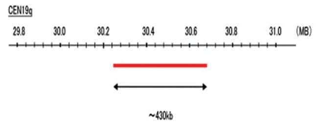 Abnova CEN19q (R6G) FISH Probe 1 Set:Life Sciences