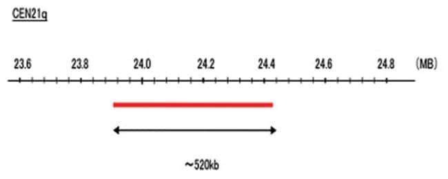 Abnova CEN21q (R6G) FISH Probe 1 Set:Life Sciences