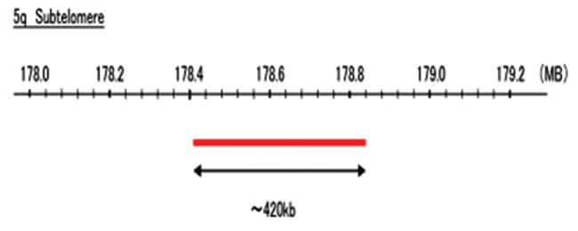 Abnova 5q Subtelomere (Texas Red) FISH Probe 1 Set:Life Sciences