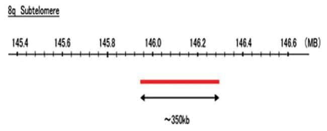 Abnova 8q Subtelomere (DEAC) FISH Probe 1 Set:Life Sciences