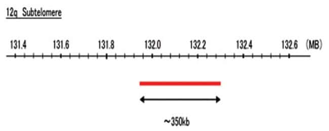 Abnova 12q Subtelomere (Cy5) FISH Probe 1 Set:Life Sciences