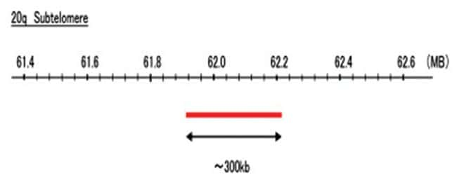Abnova 20q Subtelomere (Texas Red) FISH Probe 1 Set:Life Sciences
