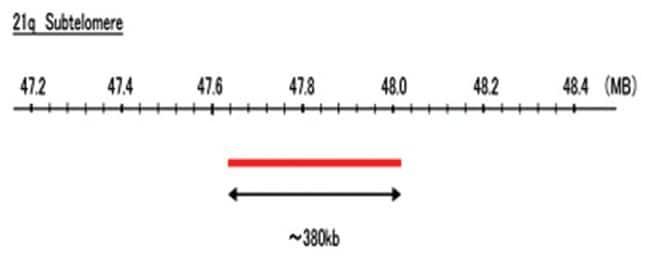 Abnova 21q Subtelomere (Texas Red) FISH Probe 1 Set:Life Sciences