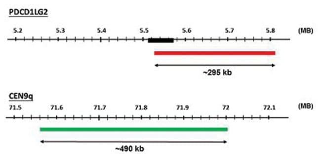 Abnova PDCD1LG2/CEN9q (Texas Red/FITC) FISH Probe PDCD1LG2/CEN9q FISH Probe:Life